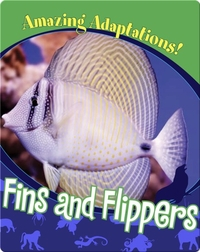 Fins and Flippers