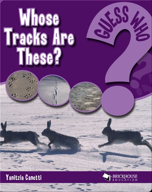 Whose Tracks Are These?