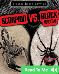 Scorpion vs. Black Widow
