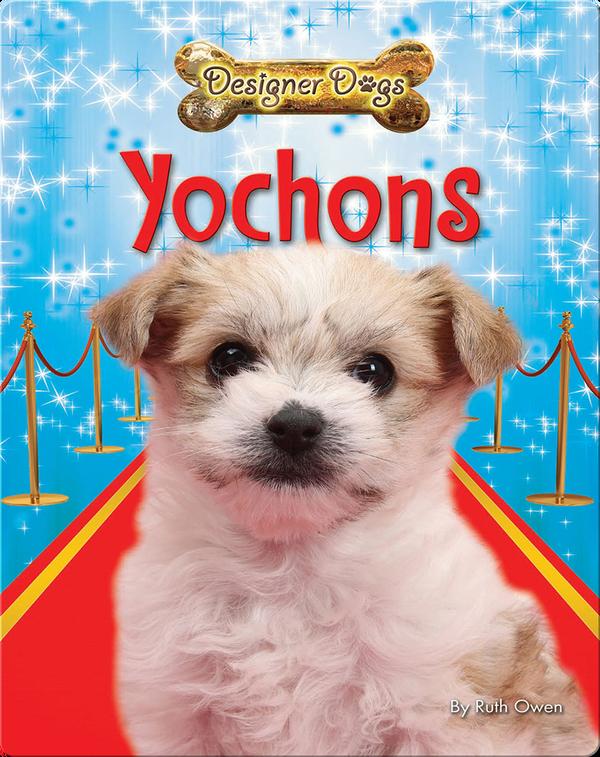 Yochons