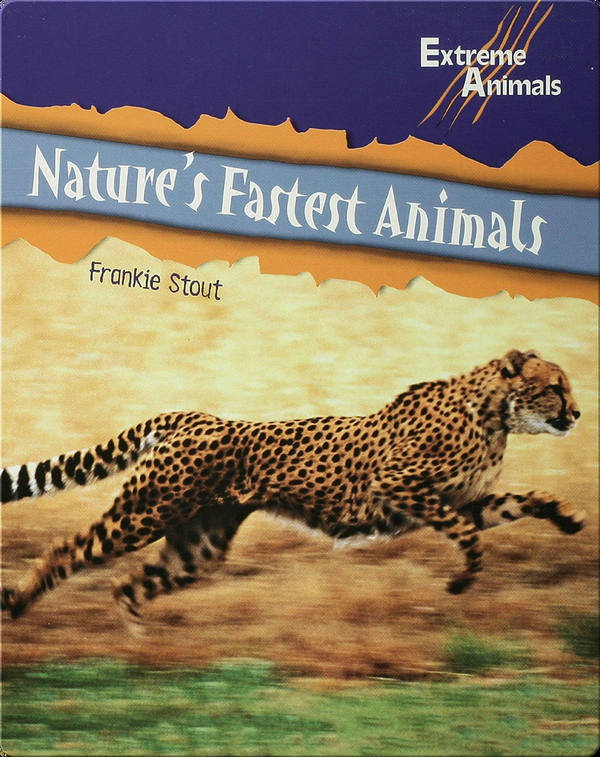Nature's Fastest Animals