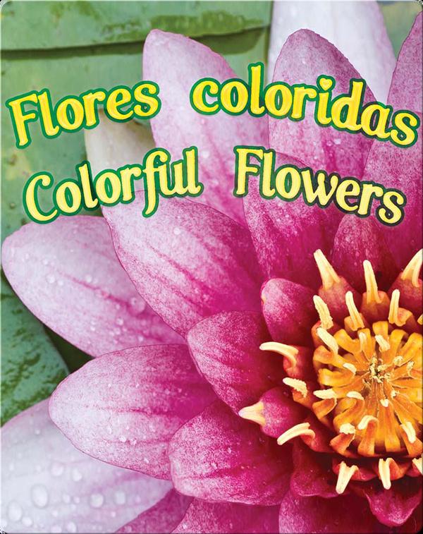 Flores Coloridas  (Colorful Flowers)