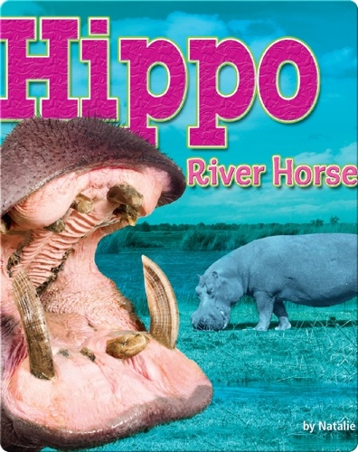 Hippo: River Horse