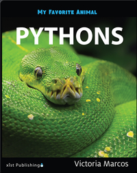 My Favorite Animal: Pythons