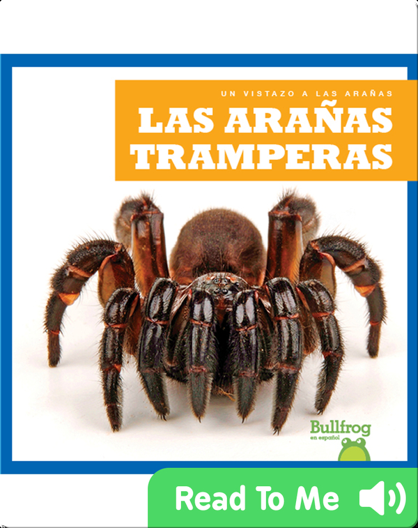 Las arañas tramperas