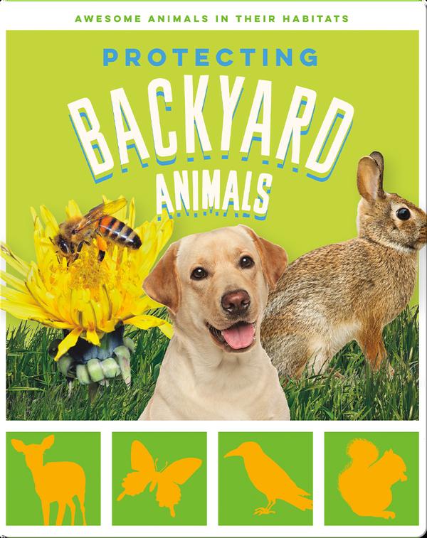 Protecting Backyard Animals