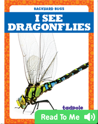 I See Dragonflies