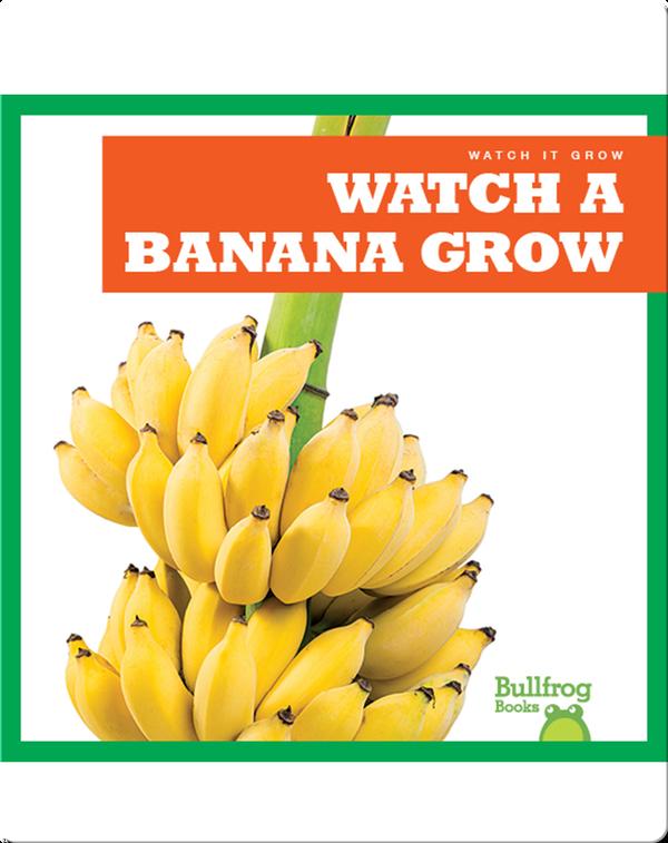 Watch a Banana Grow