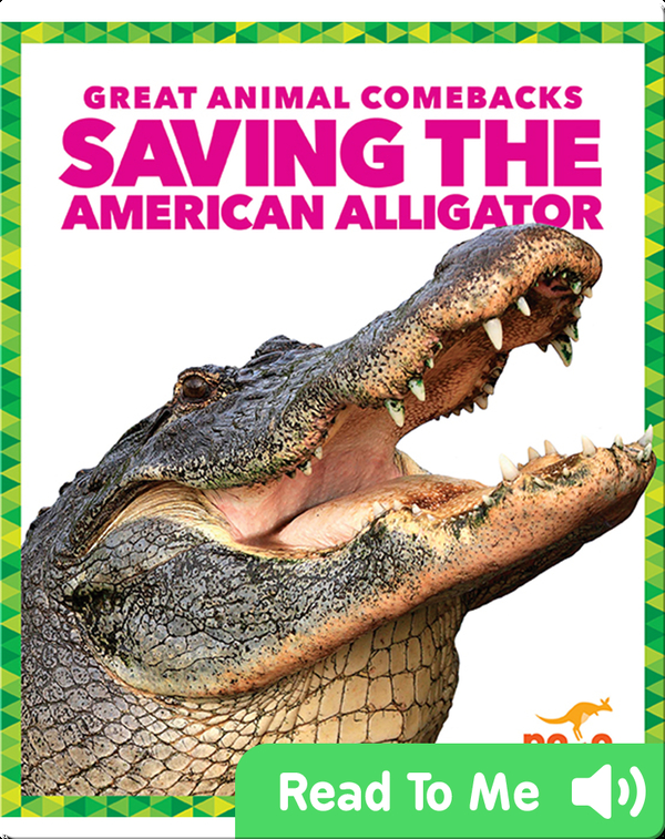 Saving the American Alligator