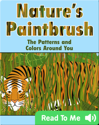 Nature's Paintbrush: The Patterns and Colors Around You