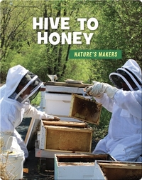 Hive to Honey