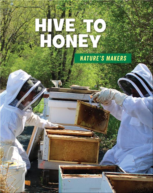 Hive to Honey