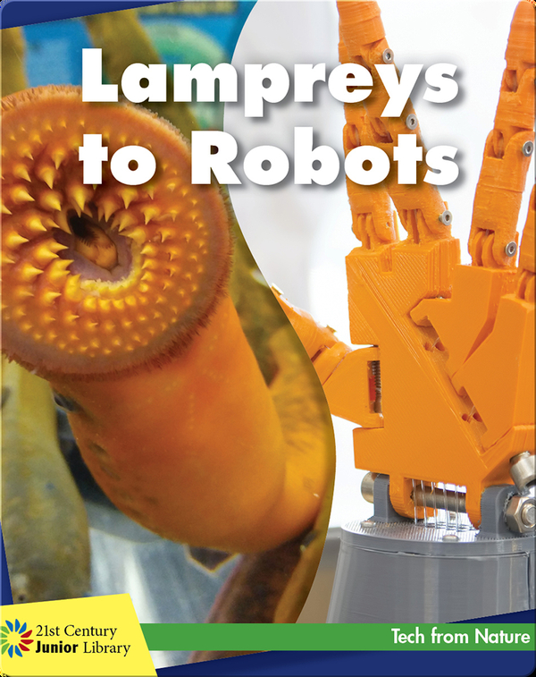 Lampreys to Robots