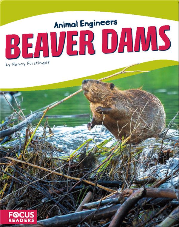 Animal Engineers: Beaver Dams