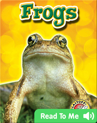 Frogs: Backyard Wildlife