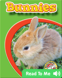 Bunnies: Watch Animals Grow