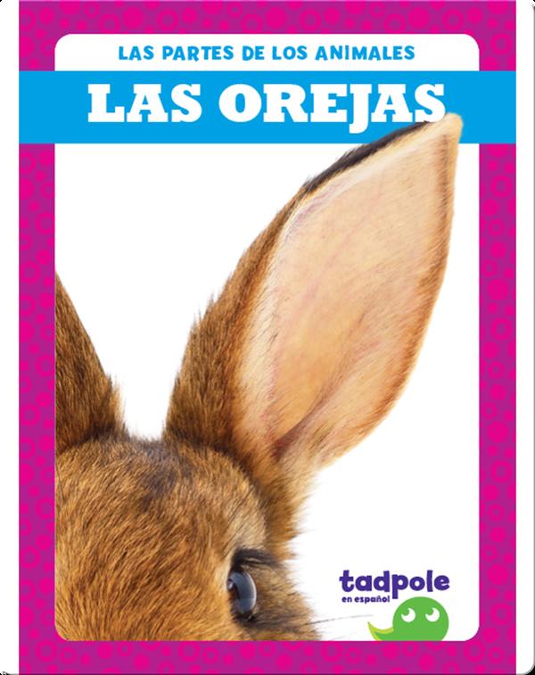 Las partes de los animales: Las orejas