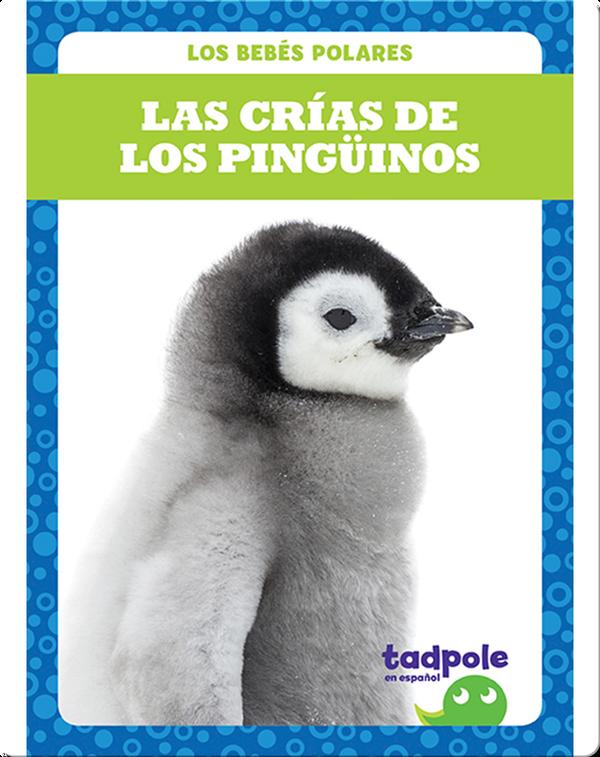 Las crías de los pingüinos