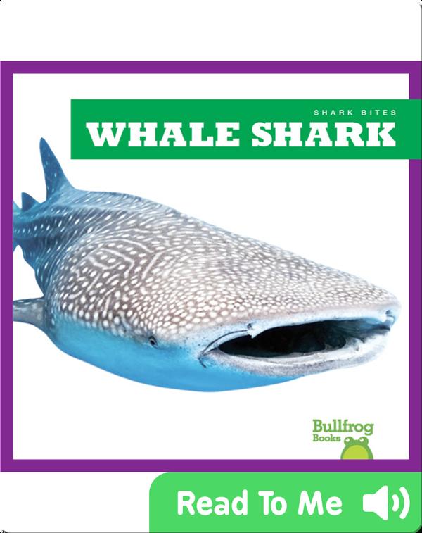 Shark Bites: Whale Shark