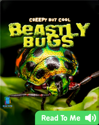 Creepy But Cool: Beastly Bugs