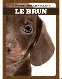 Le brun (Brown)