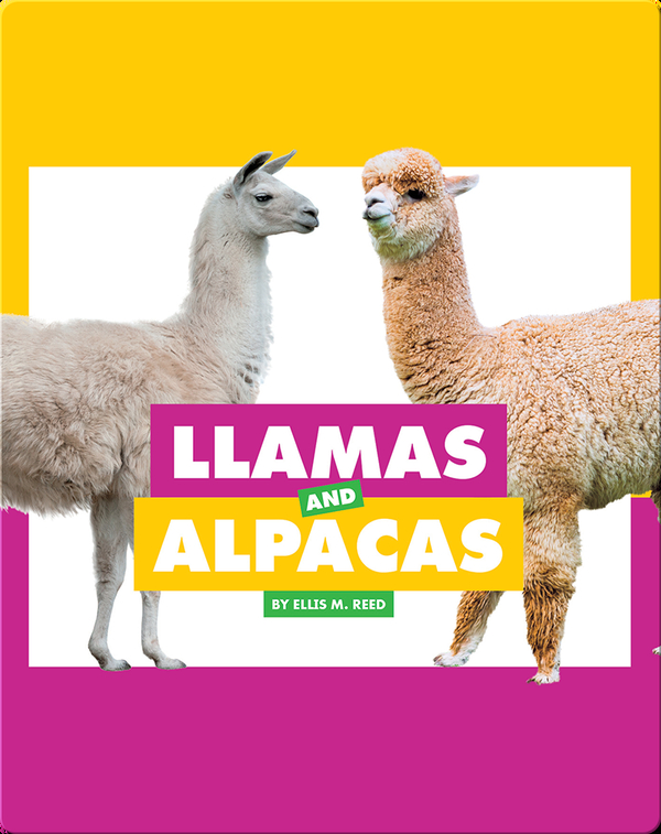 Comparing Animal Differences: Llamas and Alpacas