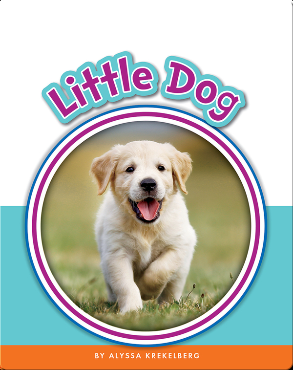 Learning Sight Words: Little Dog