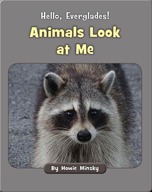 Hello, Everglades!: Animals Look at Me