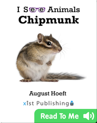 I See Animals: Chipmunk