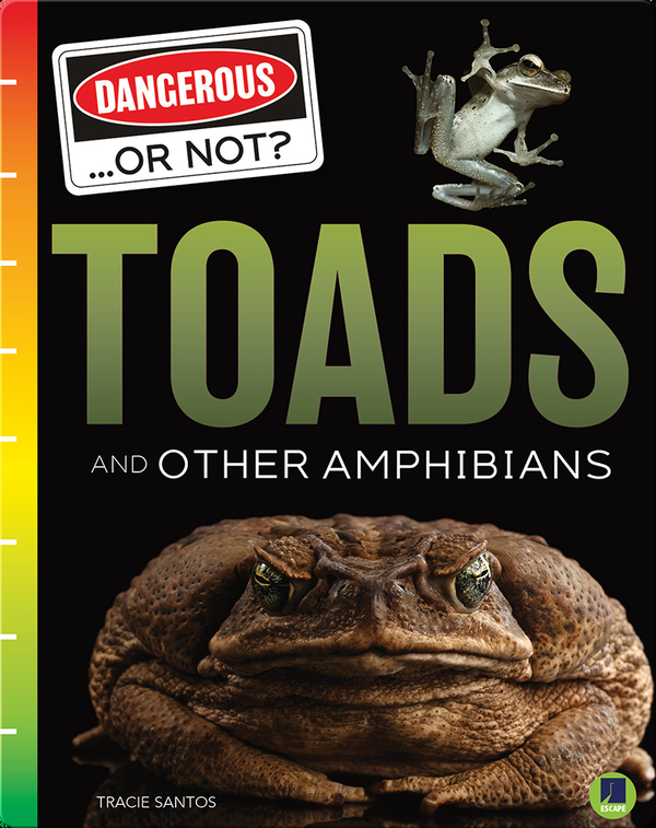 Dangerous...or Not?: Toads and Other Amphibians