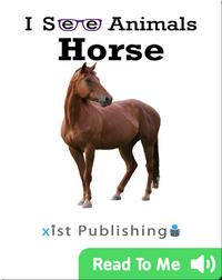 I See Animals: Horse