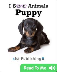 I See Animals: Puppy