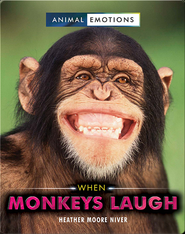 Animal Emotions: When Monkeys Laugh