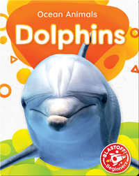 Ocean Animals: Dolphins