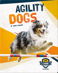 Canine Athletes: Agility Dogs