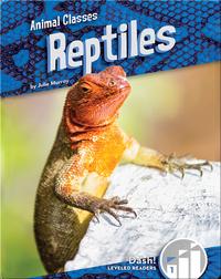 Animal Classes: Reptiles