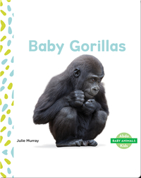 Baby Animals: Baby Gorillas