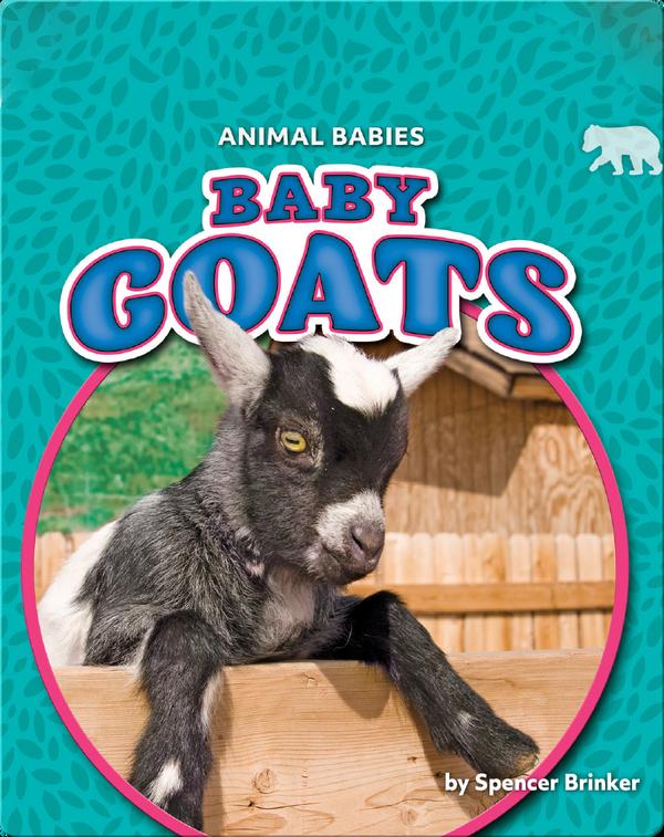 Animal Babies: Baby Goats