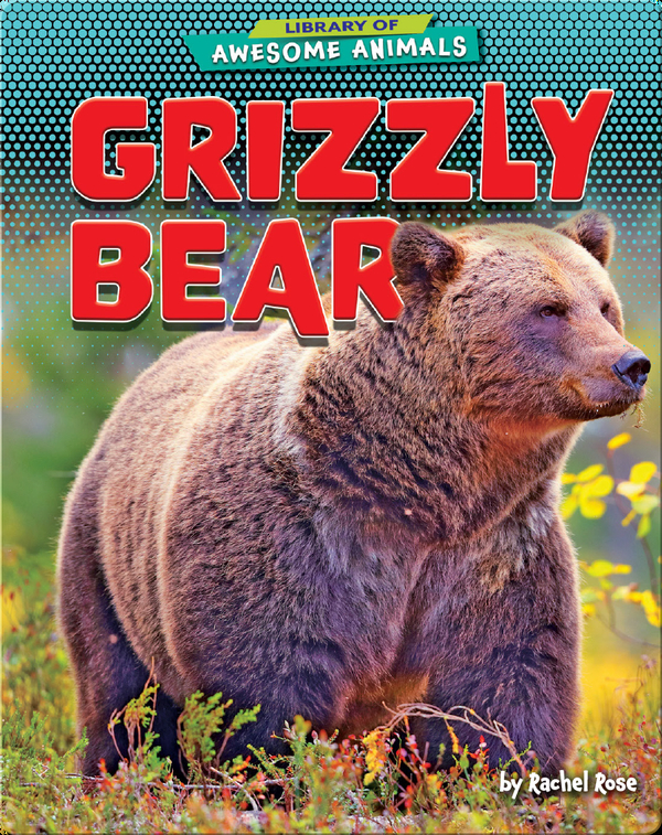 Awesome Animals: Grizzly Bear