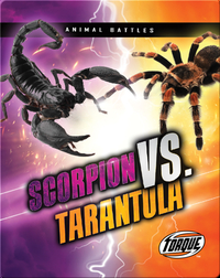Animal Battles: Scorpion vs. Tarantula