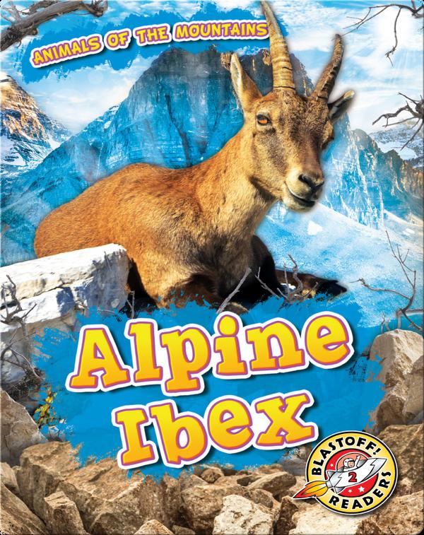 Animals of the Mountains: Alpine Ibex