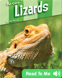 Pet Care: Lizards