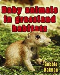Baby Animals in Grassland Habitats