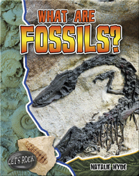 What Are Fossils? (Let's Rock!)