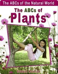 The ABCs of Plants