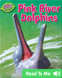 Pink River Dolphins