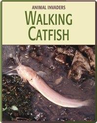 Animal Invaders: Walking Catfish