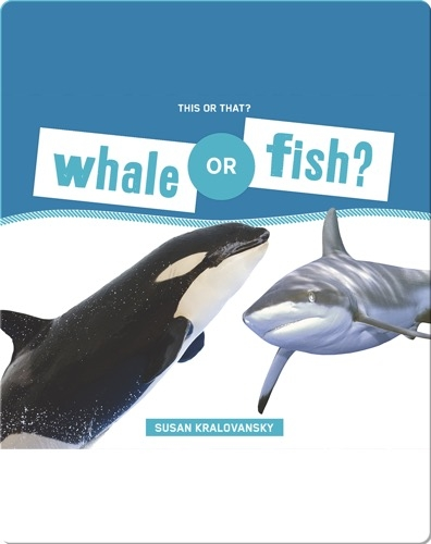 Whale or Fish?