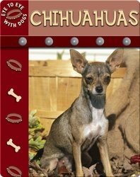 Eye To Eye With Dogs: Chihuahuas