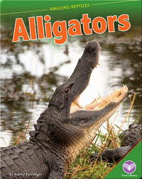 Amazing Reptiles: Alligators